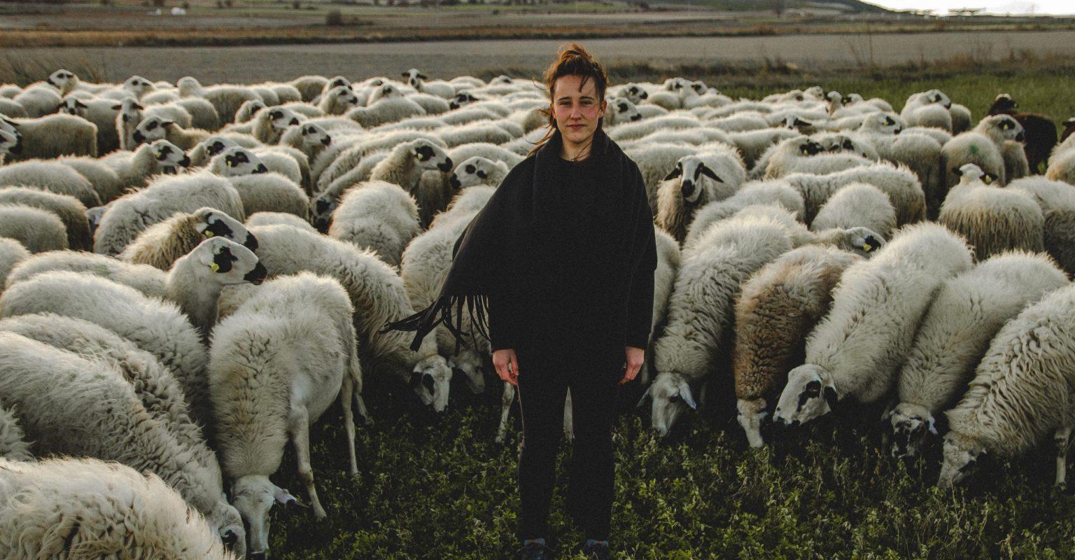 La Pastora marcela en el quijote feminismo castellano